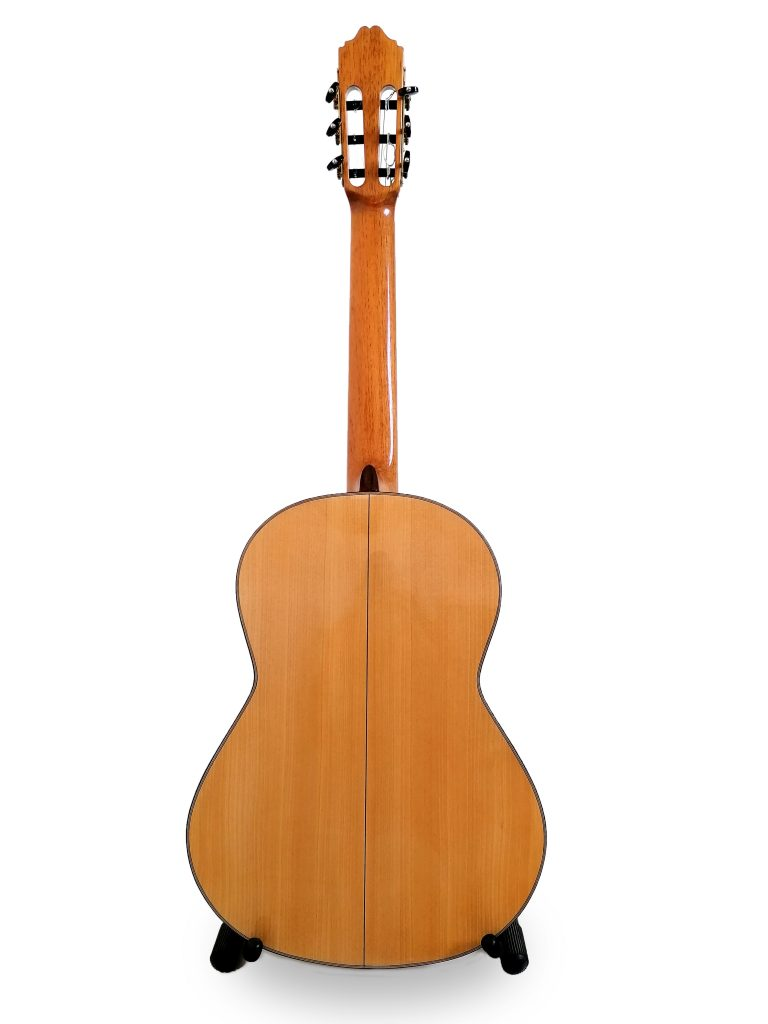 parte trasera guitarra